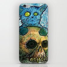 Blue Cat on a Skull iPhone & iPod Skin
