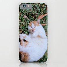 Sleepy Cat iPhone 6s Slim Case