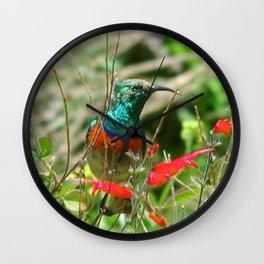 Honey Bird Wall Clock