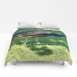 Peacock in the park Comforters