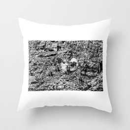 MOUNT Throw Pillow