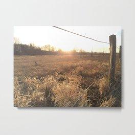morning sun Metal Print