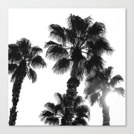 Palm Tree Art Print {3 of 3} | B&W Topical Beach Plant Nature Vacation Sun Vibes Artwork Canvas Print