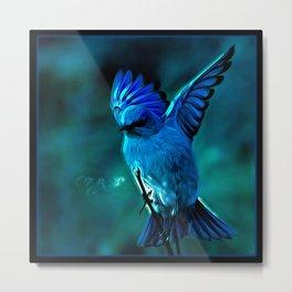 Bird Models: Mountain Bluebird 01-01 Metal Print
