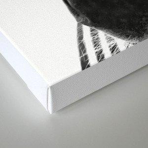 Black and white zebra illustration Canvas Print