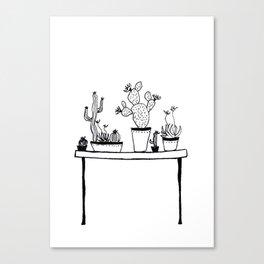 Cactus 54 Canvas Print