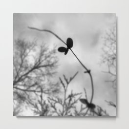 little bow song Metal Print