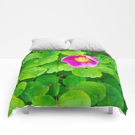 little pink flowes Comforters