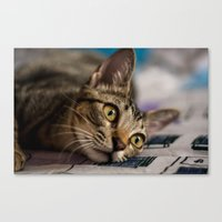 nori Canvas Prints featuring Nori by Yvo Photography