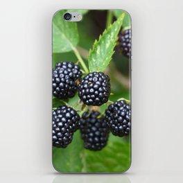 Blackberry Juicy Delicious Summer Fruit Gardener Gardening iPhone Skin