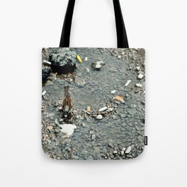 Bird in Bucharest Tote Bag