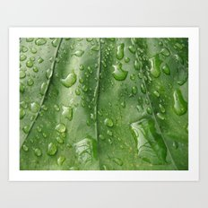 It Rained Art Print