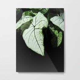 White Leaves Metal Print