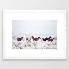 Winter Horseland Framed Art Print