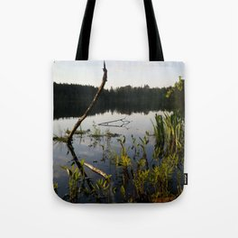 Majestic Waters Tote Bag