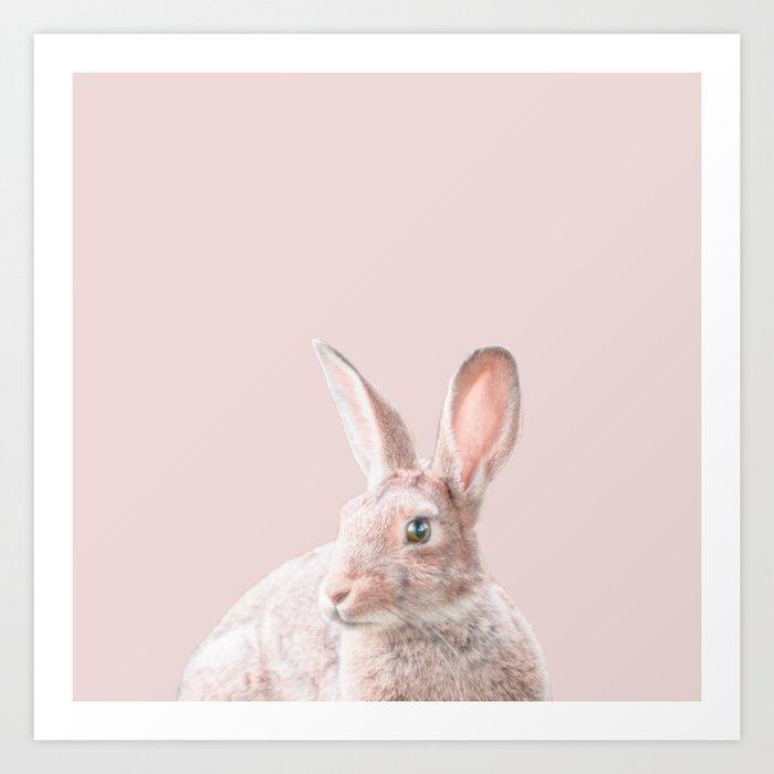 Bunny Art Print