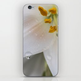 Raindrops on lily iPhone Skin