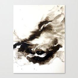 Black + White 2 Canvas Print