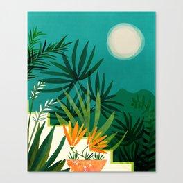 Tropical Moonlight / Night Scene Illustration Canvas Print