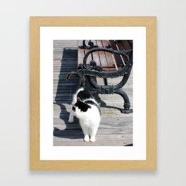 Boardwalk Kitty Framed Art Print
