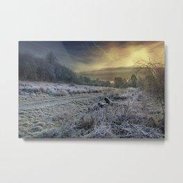Frosty Meadow Metal Print