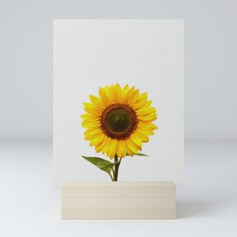 Sunflower Still Life Mini Art Print