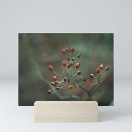 Red Berries Mini Art Print