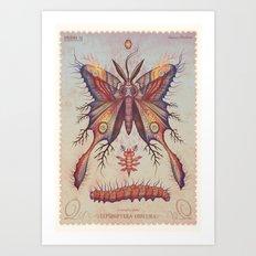 Limenitis pluto Art Print