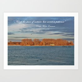 Pace of Nature Art Print