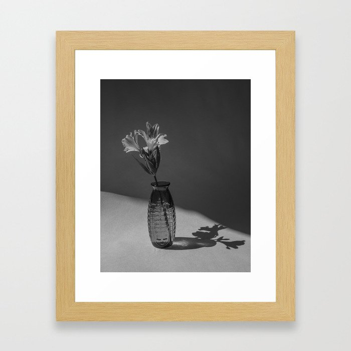 Shadow and flower Framed Art Print