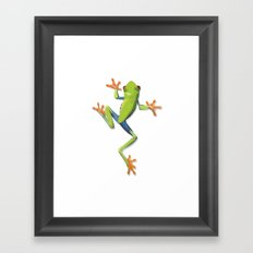 Greenery tree-frog Framed Art Print