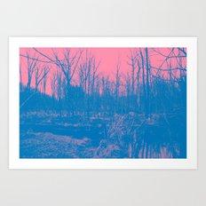 767 Art Print