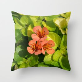 Three in colour...... Throw Pillow