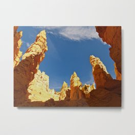 The Navajo Trail 2 Metal Print