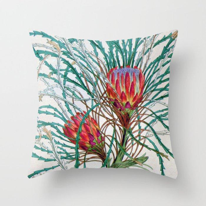 A Protea flower Throw Pillow