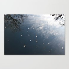 beauty in filth Canvas Print