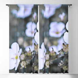 Wild & White little flowers and it's buds Blackout Curtain