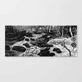Avery Creek Canvas Print