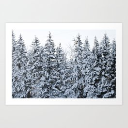 North Dakota Trees. Art Print