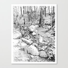 Running creek. Canvas Print