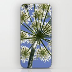 Looking Up iPhone & iPod Skin
