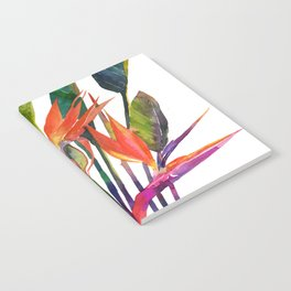 The bird of paradise Notebook