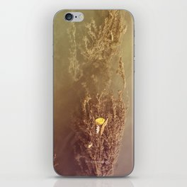 Water Plant iPhone Skin