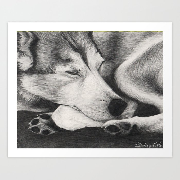 Sleeping Wolf Art Print