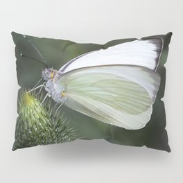 White Butterfly on Thistle Pillow Sham