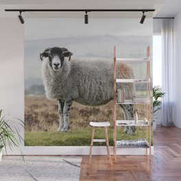 Sheep Wall Mural