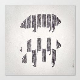 Secetur porcus Canvas Print