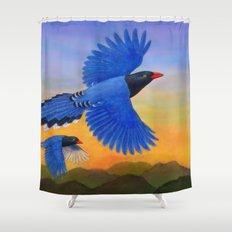 Taiwan Blue Magpie(1) Shower Curtain