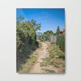 Small dirt way between the allotment garden Metal Print