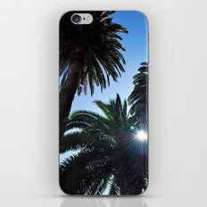 Ray of Sun through Palm Trees iPhone & iPod Skin